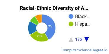 Racial-Ethnic Diversity of ABCO Technology Undergraduate Students