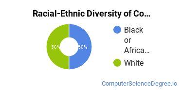 Racial-Ethnic Diversity of Computer Information Systems Majors at American Sentinel University