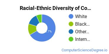 Racial-Ethnic Diversity of Computer Systems Networking and Telecommunications Majors at Arapahoe Community College