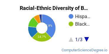 Racial-Ethnic Diversity of BC Undergraduate Students