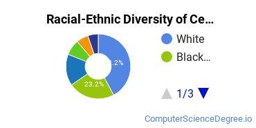 Racial-Ethnic Diversity of Central Piedmont Community College Undergraduate Students
