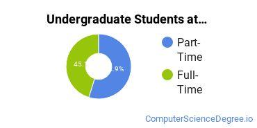 Full-Time vs. Part-Time Undergraduate Students at  Coastal Carolina Community College