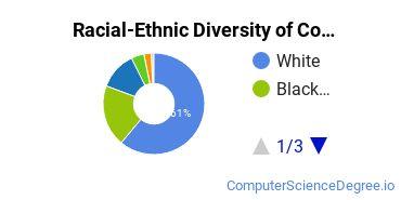 Racial-Ethnic Diversity of Coastal Carolina Community College Undergraduate Students