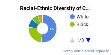 Racial-Ethnic Diversity of CSM Undergraduate Students