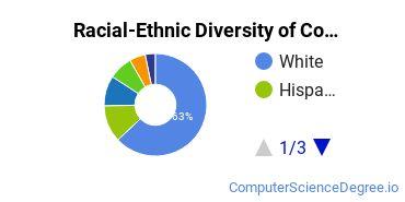 Racial-Ethnic Diversity of Colorado College Undergraduate Students