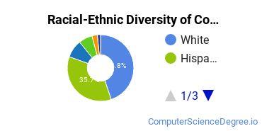 Racial-Ethnic Diversity of Colorado State University - Pueblo Undergraduate Students