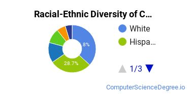 Racial-Ethnic Diversity of CCA Undergraduate Students