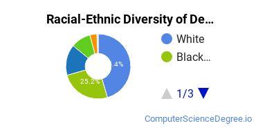 Racial-Ethnic Diversity of DeVry University - Illinois Undergraduate Students