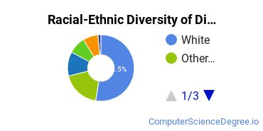 Racial-Ethnic Diversity of Digipen Undergraduate Students