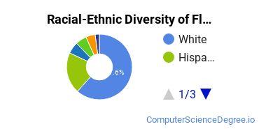Racial-Ethnic Diversity of Florida Poly Undergraduate Students