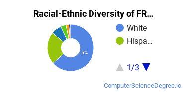 Racial-Ethnic Diversity of FRCC Undergraduate Students