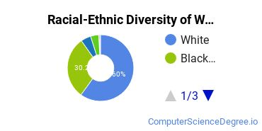 Racial-Ethnic Diversity of Wallace, Dothan Undergraduate Students