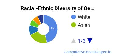 Racial-Ethnic Diversity of Georgia Tech Undergraduate Students