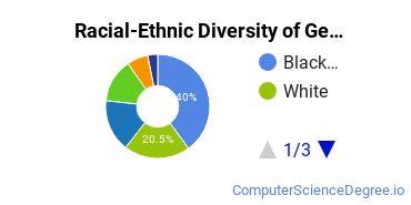 Racial-Ethnic Diversity of Georgia State Undergraduate Students