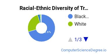 Racial-Ethnic Diversity of Trenholm State Undergraduate Students