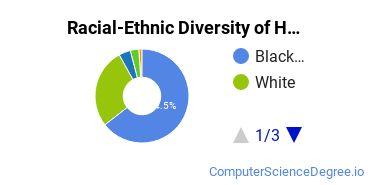 Racial-Ethnic Diversity of Herzing University - Birmingham Undergraduate Students