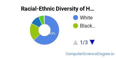 Racial-Ethnic Diversity of Hopkinsville Community College Undergraduate Students