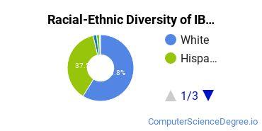 Racial-Ethnic Diversity of IBMC Undergraduate Students