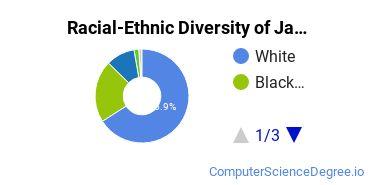 Racial-Ethnic Diversity of Jacksonville State University Undergraduate Students