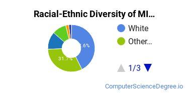 Racial-Ethnic Diversity of MIU Undergraduate Students