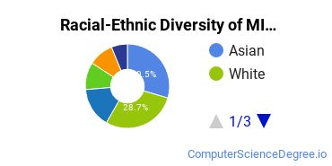 Racial-Ethnic Diversity of MIT Undergraduate Students