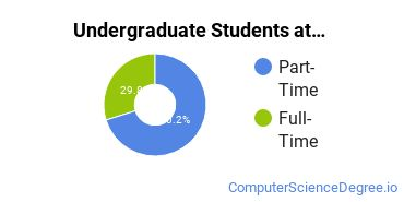 Full-Time vs. Part-Time Undergraduate Students at  Mitchell Community College