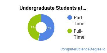 Full-Time vs. Part-Time Undergraduate Students at  ANU Lexington