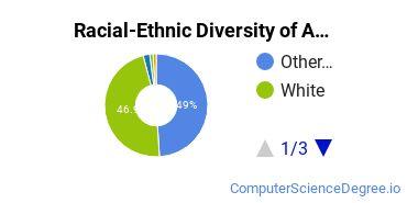 Racial-Ethnic Diversity of ANU Lexington Undergraduate Students