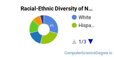 Racial-Ethnic Diversity of Northern Virginia Community College Undergraduate Students
