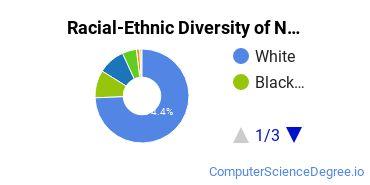 Racial-Ethnic Diversity of NW-SCC Undergraduate Students