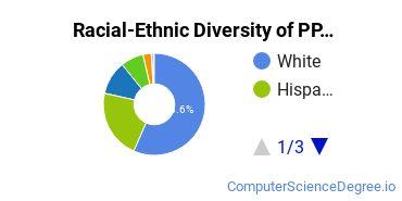 Racial-Ethnic Diversity of PPCC Undergraduate Students