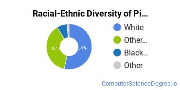 Racial-Ethnic Diversity of Pittsburgh Technical College Undergraduate Students
