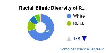 Racial-Ethnic Diversity of RCC Undergraduate Students
