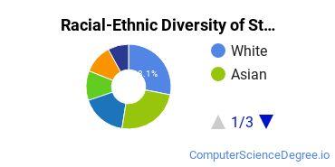 Racial-Ethnic Diversity of Stanford Undergraduate Students