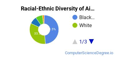 Racial-Ethnic Diversity of Ai Virginia Beach Undergraduate Students