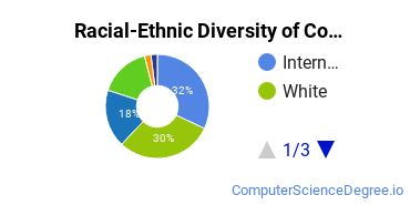Racial-Ethnic Diversity of Computer Information Systems Majors at Community College of Baltimore County