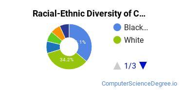 Racial-Ethnic Diversity of CCBC Undergraduate Students