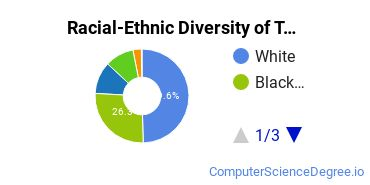 Racial-Ethnic Diversity of TNCC Undergraduate Students