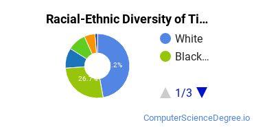 Racial-Ethnic Diversity of Tidewater Community College Undergraduate Students