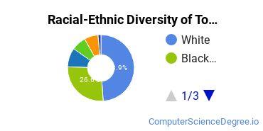 Racial-Ethnic Diversity of Towson Undergraduate Students