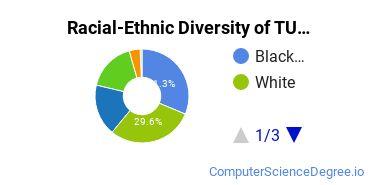 Racial-Ethnic Diversity of TUI Undergraduate Students