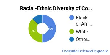 Racial-Ethnic Diversity of Computer Information Systems Majors at Tulane University of Louisiana