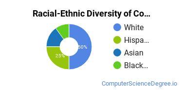 Racial-Ethnic Diversity of Computer & IS Security Majors at Tulane University of Louisiana