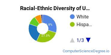 Racial-Ethnic Diversity of UC Santa Cruz Undergraduate Students