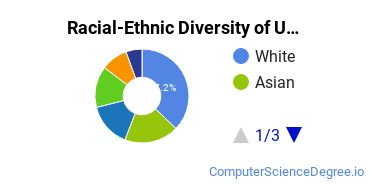 Racial-Ethnic Diversity of UChicago Undergraduate Students