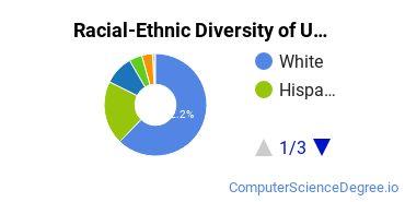 Racial-Ethnic Diversity of UCCS Undergraduate Students