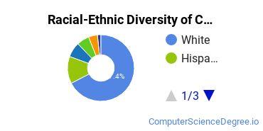 Racial-Ethnic Diversity of CU - Boulder Undergraduate Students
