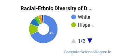 Racial-Ethnic Diversity of DU Undergraduate Students