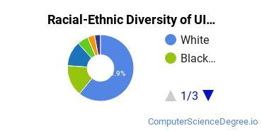 Racial-Ethnic Diversity of UIS Undergraduate Students