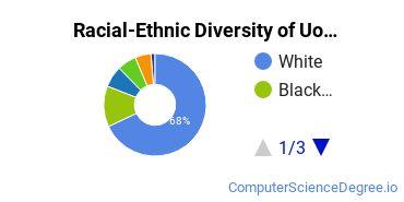 Racial-Ethnic Diversity of UofL Undergraduate Students